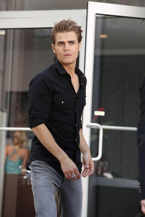 Stefan (Paul Wesley) sieht Katherine in Chicago, die sich mit ihm verbünden möchte, doch Stefan macht ihr klar, dass er sie nicht in seine Pläne... - Bildquelle: 2011 THE CW NETWORK, LLC. ALL RIGHTS RESERVED.