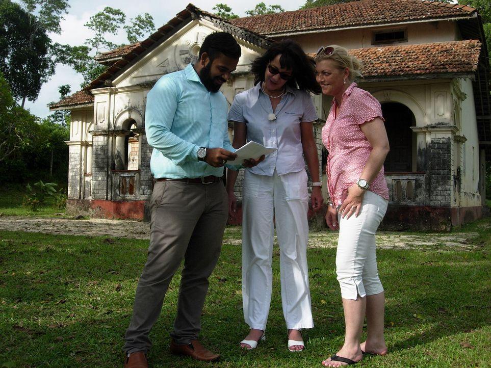 Auf ihrer Suche nach einem Grundstück oder einem Haus merken Iris (M.) und Jella (r.), dass es gar nicht so einfach ist, als Europäer auf Sri Lanka... - Bildquelle: kabel eins