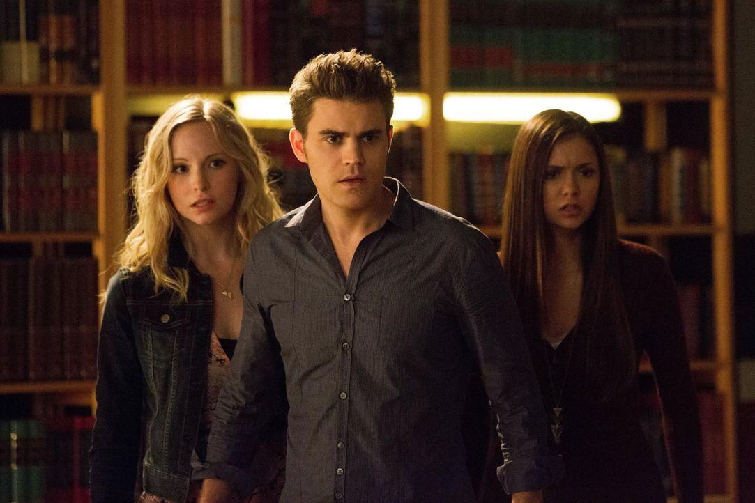 Die Teams werden neu gemischt. Um sich gegen Rebekah und ihren Bruder zu schützen, müssen Caroline  (Candice Accola, l.), Stefan (Paul Wesley, M.) u... - Bildquelle: Warner Brothers