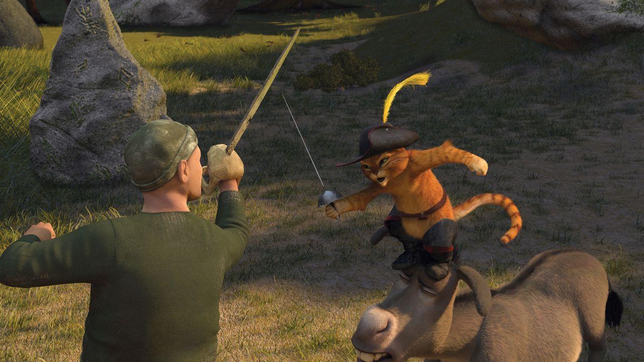 Shrek macht sich zusammen mit Esel Esel und dem Gestiefelten Kater auf den Weg, den zukünftigen König von Weit, Weit, Weg zu finden. Ein gefährliche... - Bildquelle: TM &   2007 Dreamworks Animation LLC