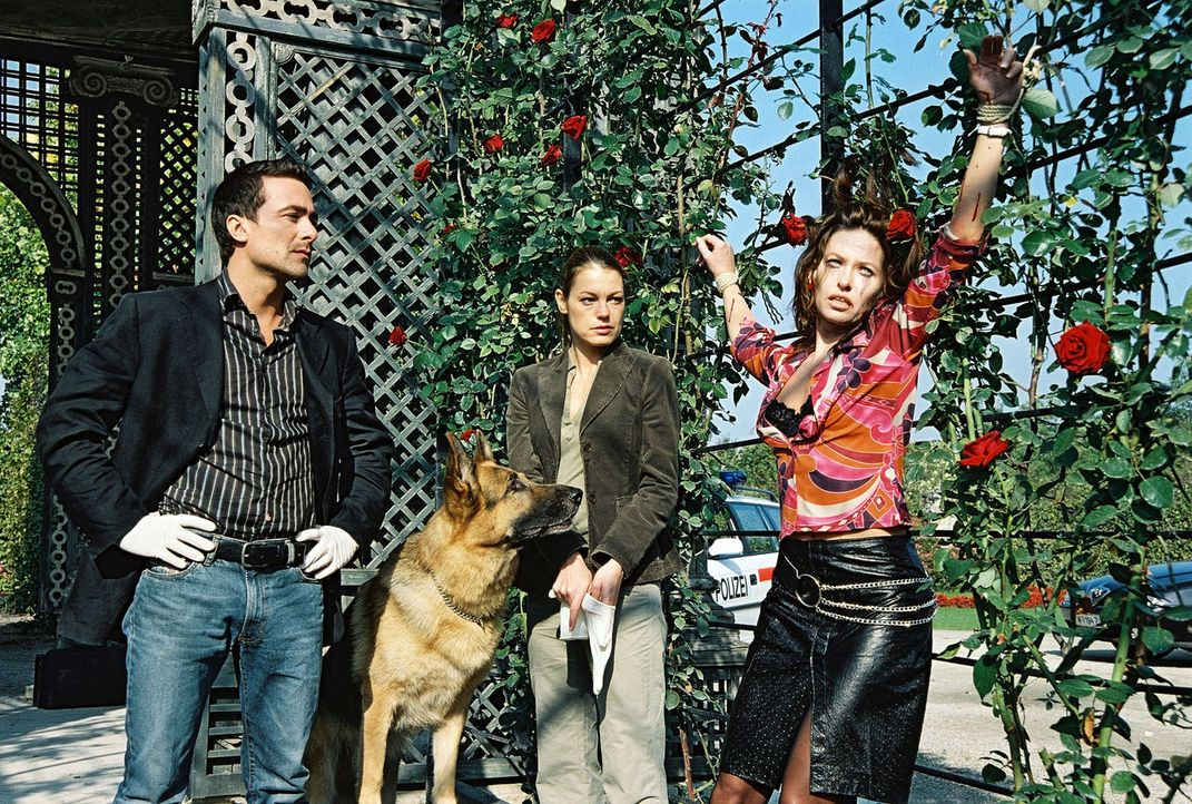Marc (Alexander Pschill, l.), Niki (Elke Winkens, M.) und Rex finden eine weitere Leiche. Eva Süß (Silvia Wohlmuth, r.) wurde an einer Rosenhecke an... - Bildquelle: Ali Schafler Sat.1