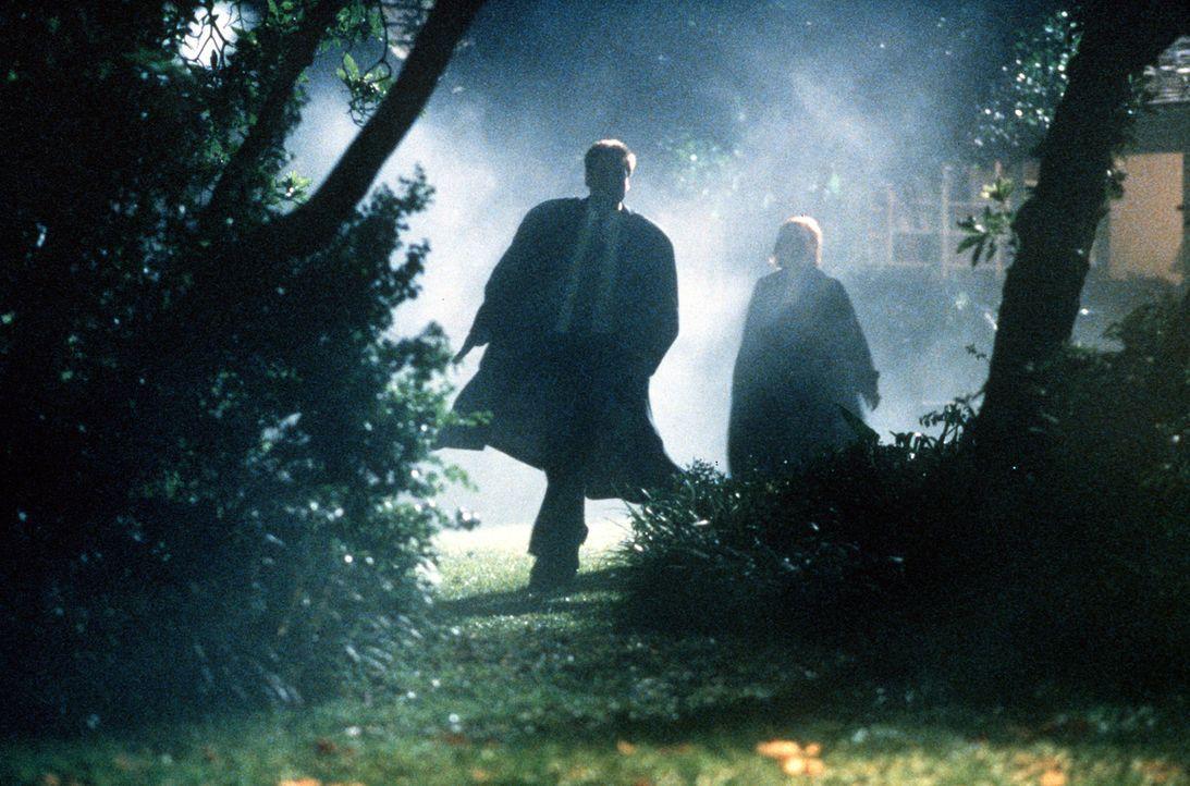 Mulder (David Duchovny, l.) und Scully (Gillian Anderson, r.) suchen auf einem Grundstück nach Beweisen dafür, dass der Verdächtige ein ungeborenes... - Bildquelle: TM +   2000 Twentieth Century Fox Film Corporation. All Rights Reserved.