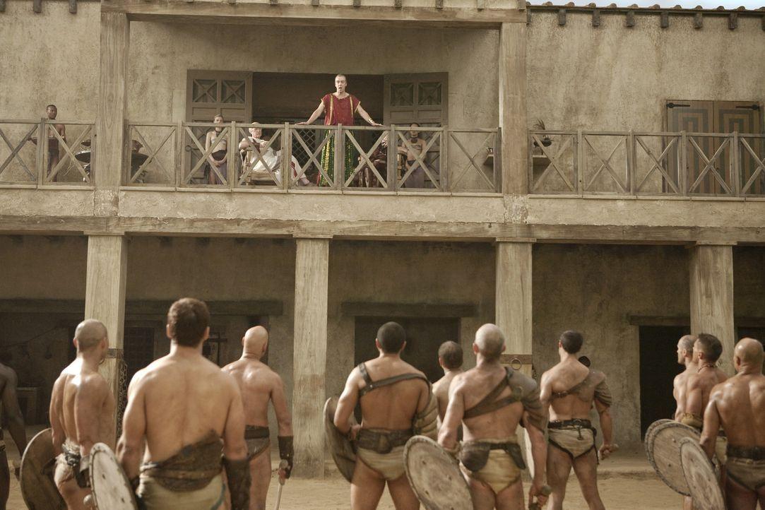 Teilt seinen Gladiatoren mit, dass ein Kampf gegen den Titanen der Arena, Theokoles, angesetzt wurde, um die Götter gnädig zu stimmen, die monatel... - Bildquelle: 2010 Starz Entertainment, LLC