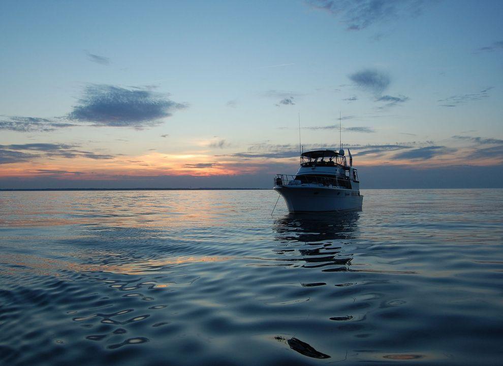 Als Freunde eines älteren Ehepaars lange nichts mehr von ihren Bekannten gehört haben, wollen sie ihnen einen Besuch auf deren Schiff abstatten, doc... - Bildquelle: M2 Pictures