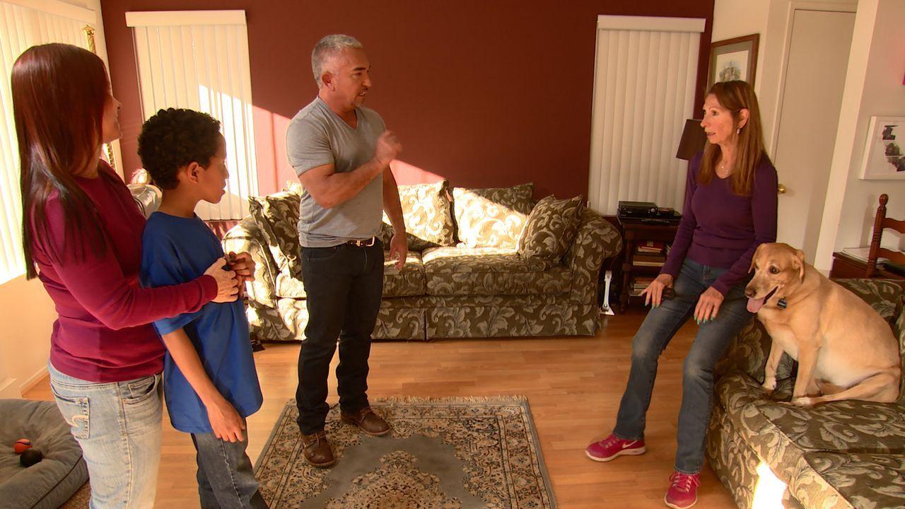 Cesar (2.v.r.) bekommt einen Anruf von Alyssa (l.), deren Mutter Leslie einen Labrador besitzt, der sich überhaupt nicht mit Leslies Enkel Mason (2.... - Bildquelle: NGC/ ITV Studios Ltd