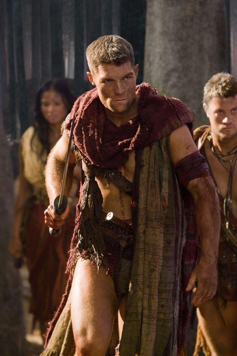 Spartacus (Liam McIntyre) schleicht sich mit Mira und mehreren Männer in die vollbesetzte Arena, als der Hinrichtungskampf von Crixus und Drago beg... - Bildquelle: 2011 Starz Entertainment, LLC. All rights reserved.