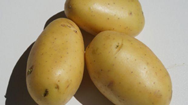 Eine eher ungewöhnliche Kombi: Lebkuchen und Kartoffeln. Doch zu Brei verarbe...