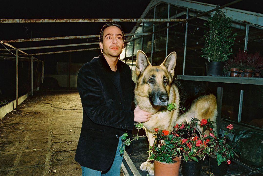 Die Ermittlungen in einem Mordfall führen Marc (Alexander Pschill, l.) und Rex in eine Gärtnerei. - Bildquelle: Ali Schafler Sat.1