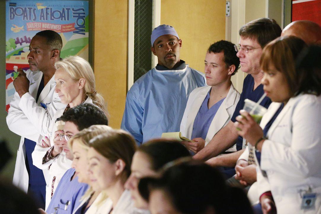 Als Amelia Hilfe bei einer Operation braucht, macht sich Ben (Jason George, M.) auf, um Callie zu holen ... - Bildquelle: ABC Studios