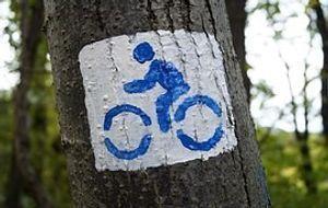 Fahrrad gemalt auf einem Baum
