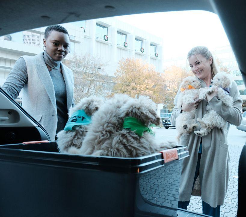 Mina (Shaunette Renée Wilson, l.) und Nic (Emily VanCamp, r.) hoffen mit Hundewelpen auf der Kinderstation für Freude sorgen zu können ... - Bildquelle: Guy D'Alema 2018 Fox and its related entities.  All rights reserved./ Guy D'Alema