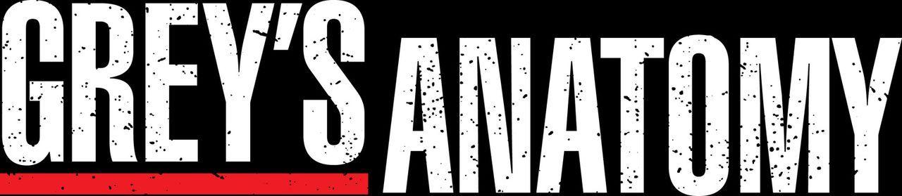 (3. Staffel) - GREY'S ANATOMY - Logo ... - Bildquelle: Touchstone Television