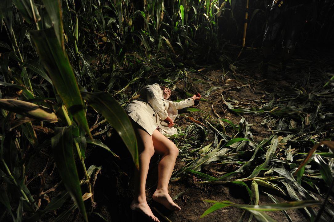 An einem Novembertag im Jahre 1989 kehrt Sharon Bloom (Alanna Stone) nicht mehr von ihrer Mittagspause zurück. Zehn Tage später wird ihre Leiche in... - Bildquelle: Jag Gundu Cineflix 2012
