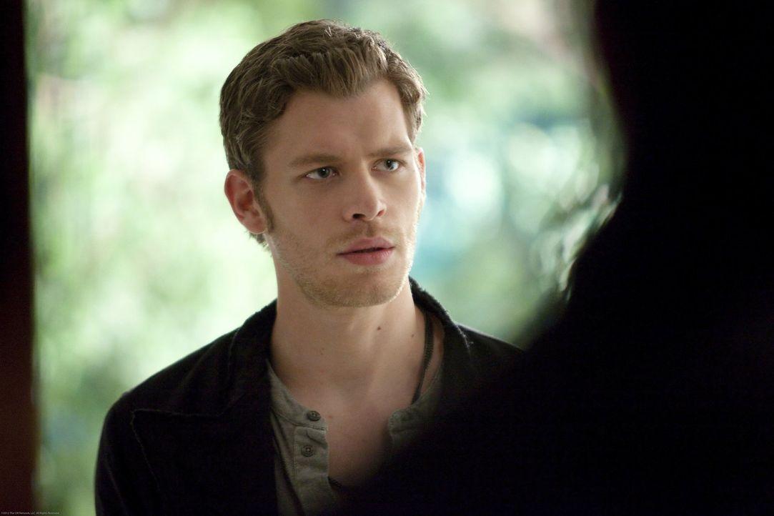 Klaus (Joseph Morgan) beschleunigt sein Vorhaben, die Stadt zu verlassen, doch er möchte nicht ohne Elena gehen ... - Bildquelle: Warner Brothers