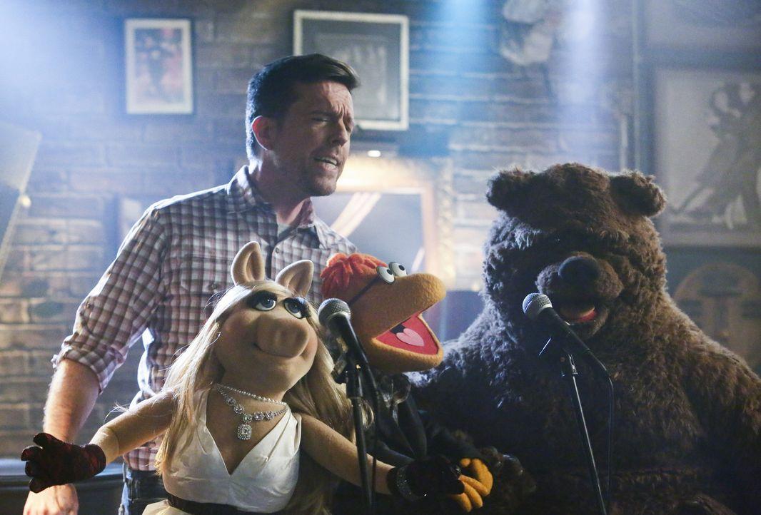 Verbringen einen unvergesslichen Abend miteinander: Ed Helms (hinten), Miss Piggy (l.), Scooter (M.) und Bobo (r.) ... - Bildquelle: Nicole Wilder ABC Studios