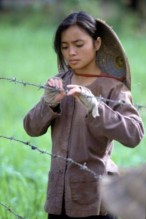 Der Krieg in Vietnam verändert das Leben der jungen Reisbäuerin Le Ly (Hiep Thi Le) grundlegend ... - Bildquelle: Warner Bros.
