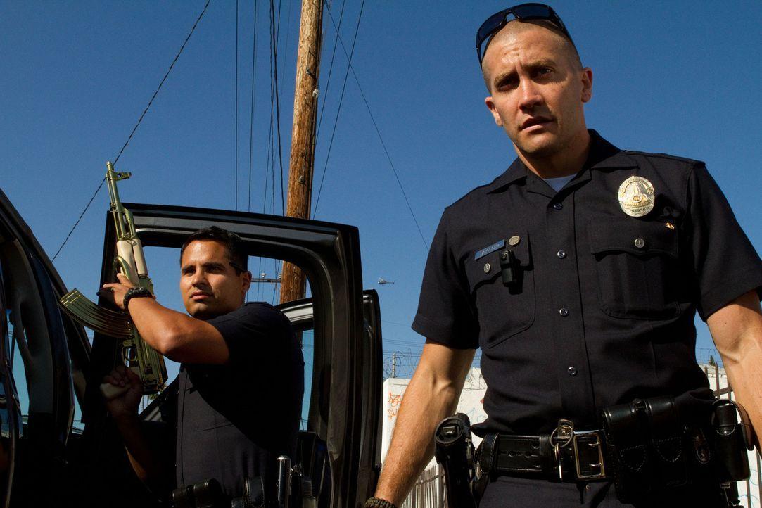 Der Bezirk South Central in Los Angeles ist ein hoch kriminelles Pflaster. Für die beiden engagierten Officers Brian Taylor (Jake Gyllenhaal, r.) un... - Bildquelle: Scott Garfield 2011 Sole Productions, LLC. All rights reserved.