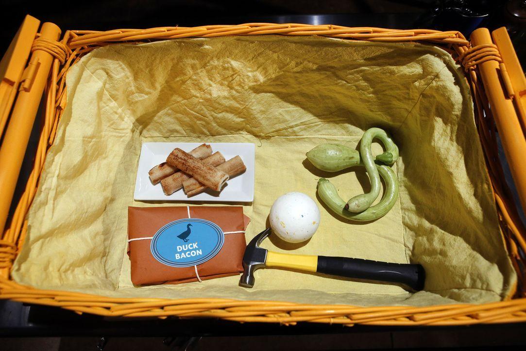 In der ersten Chopped Runde müssen die Juniorköche mit Zucchini, Bacon, gegrilltem Käse, einer riesen Wunderkugel und einem Hammer arbeiten. Nur dre... - Bildquelle: Jason DeCrow 2015, Television Food Network, G.P. All Rights Reserved