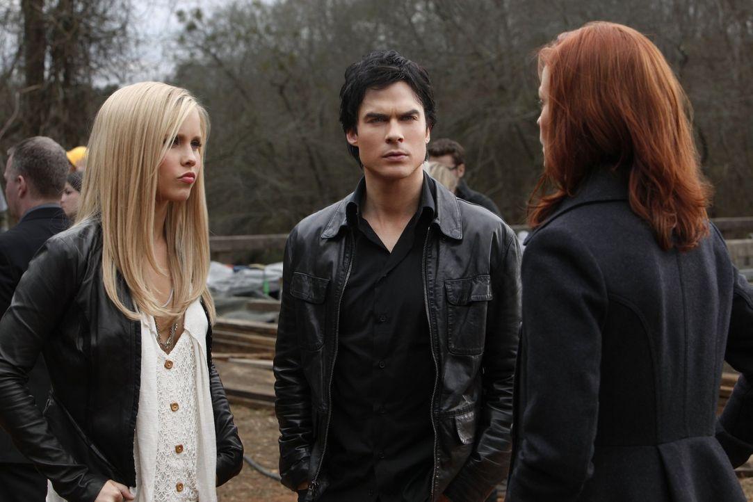 Auf der Suche nach dem Holz der 2. Weißeiche: Rebekah (Claire Holt, l.), Damon (Ian Somerhalder, M.) und Sage (Cassidy Freeman, r.) ... - Bildquelle: Warner Brothers