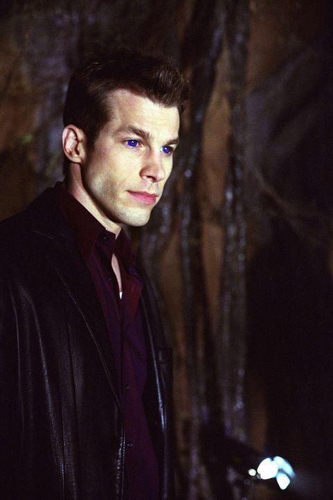 Der Groosalugg (Mark Lutz) ist wieder da. Wird er zu einem Konkurrenten für Angel? - Bildquelle: 20th Century Fox. All Rights Reserved.