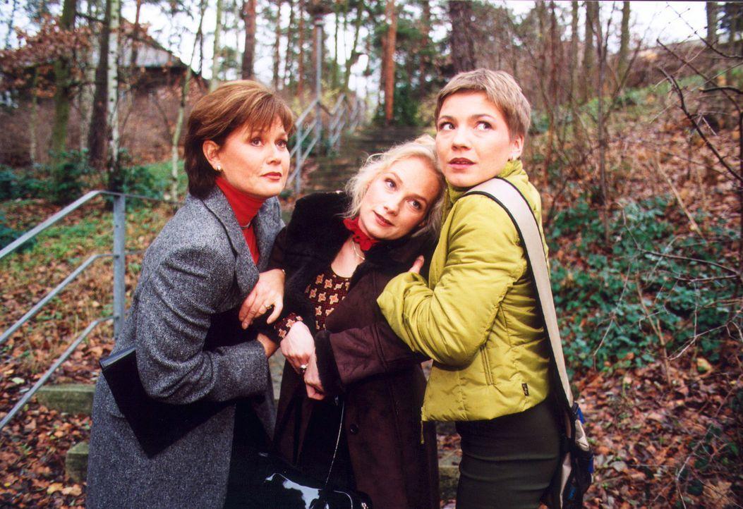 Vera Friedländer (Monika Woytowicz, l.) und Stefanie (Claudia Schmutzler, r.) finden eine junge Frau (Gundula Köster, M.), die vor der Klinik zusamm... - Bildquelle: Noreen Flynn Sat.1