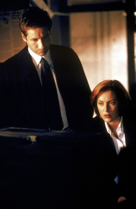 Scully (Gillian Anderson, r.) und Mulder (David Duchovny, l.) schauen sich ein Video an in der Hoffnung, den Mörder darauf erkennen zu können. - Bildquelle: TM +   2000 Twentieth Century Fox Film Corporation. All Rights Reserved.
