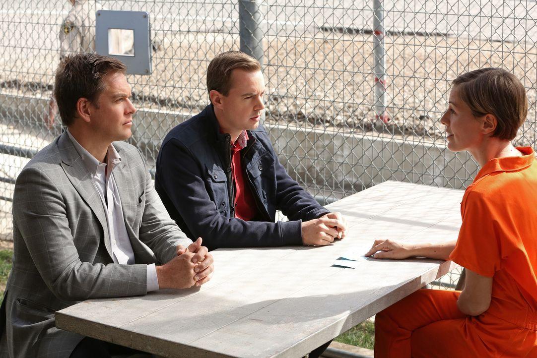 Kommen DiNozzo (Michael Weatherly, l.) und McGee (Sean Murray, M.) im Gespräch mit Heidi Partridge (Erin Allin O'Reilly, r.) weiter? - Bildquelle: CBS Television