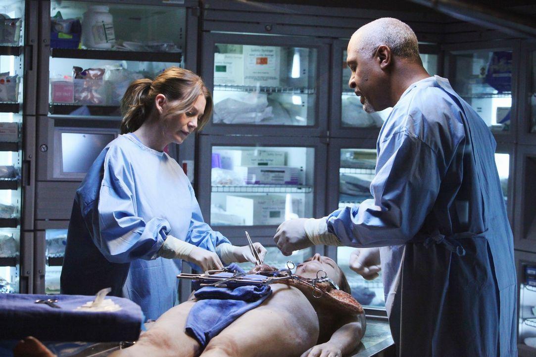 Meredith (Ellen Pompeo, l.), die auch den Konkurrenzdruck durch die neuen Kollegen aus dem Mercy West spürt, nimmt das Angebot von Webber (James Pic... - Bildquelle: Touchstone Television
