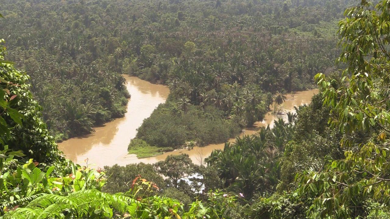 Sumatra 6 - Bildquelle: kabel eins