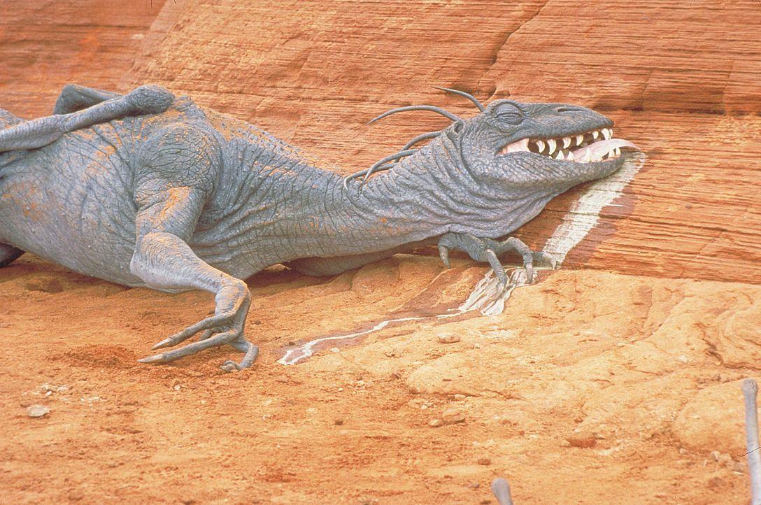 Bald bevölkern etliche verfressene Kreaturen die Erde ... - Bildquelle: 2003 Sony Pictures Television International
