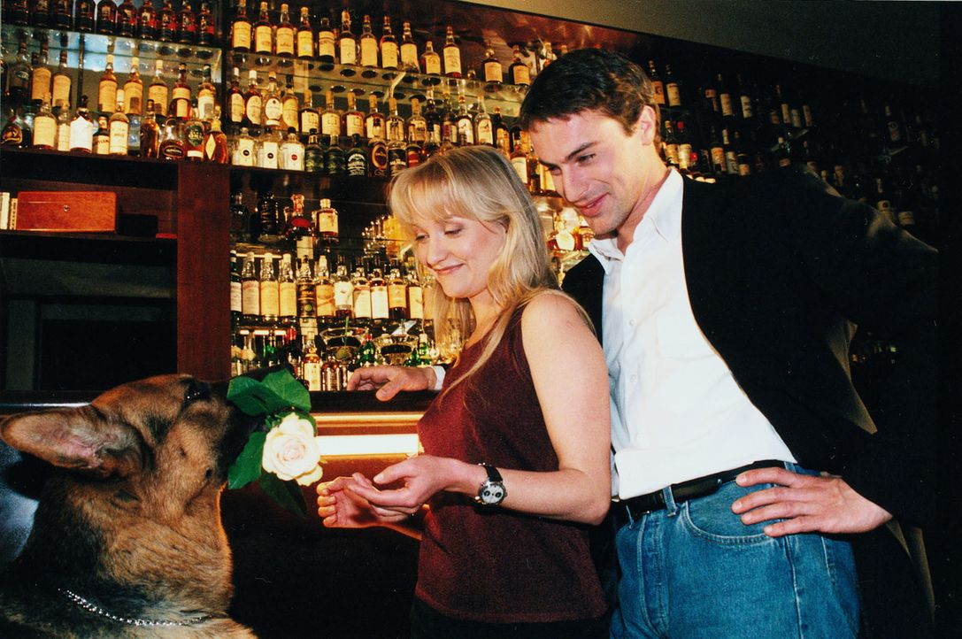 Nach getaner Arbeit führt Kommissar Brandtner (Gedeon Burkhard, r.) seine attraktive Kollegin Nina Wallentin (Eva Herzig, l.) in eine Bar aus. Rex p... - Bildquelle: Ali Schafler Sat.1