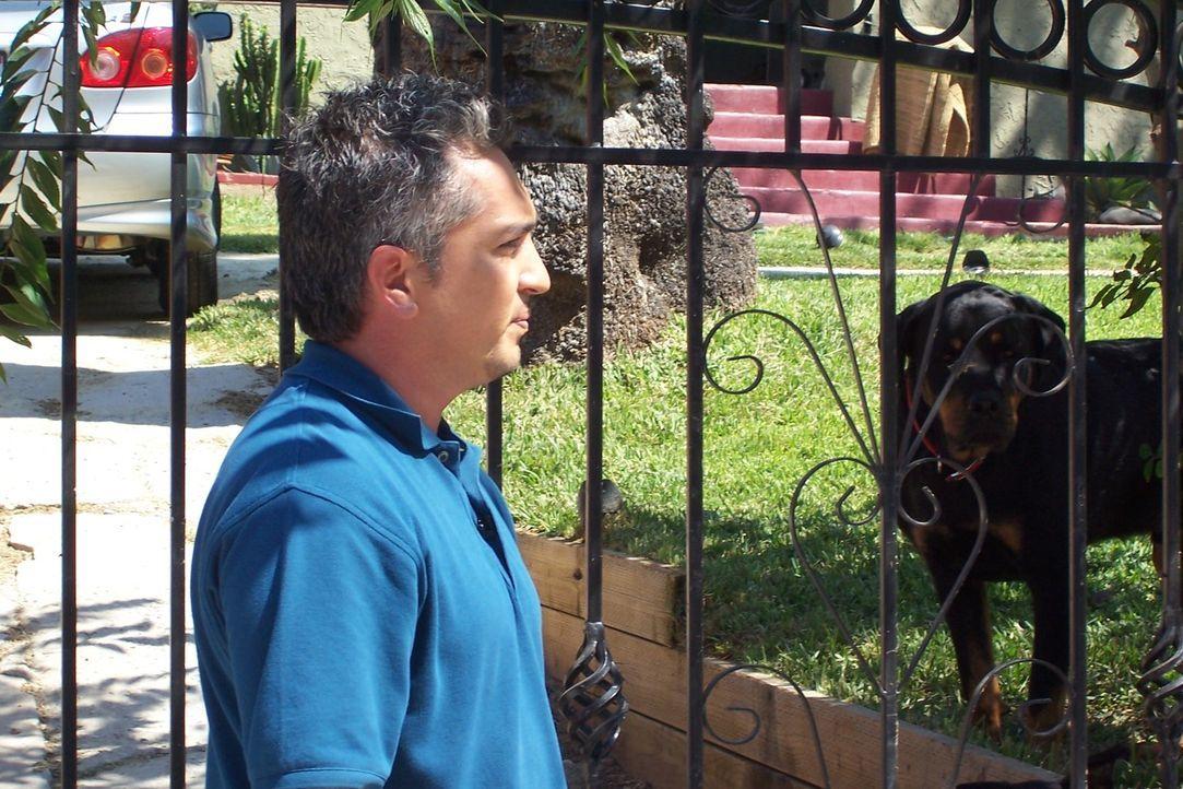 Ein neuer Fall wartet auf den Hundeflüsterer Cesar Millan ... - Bildquelle: Rive Gauche Intern. Television