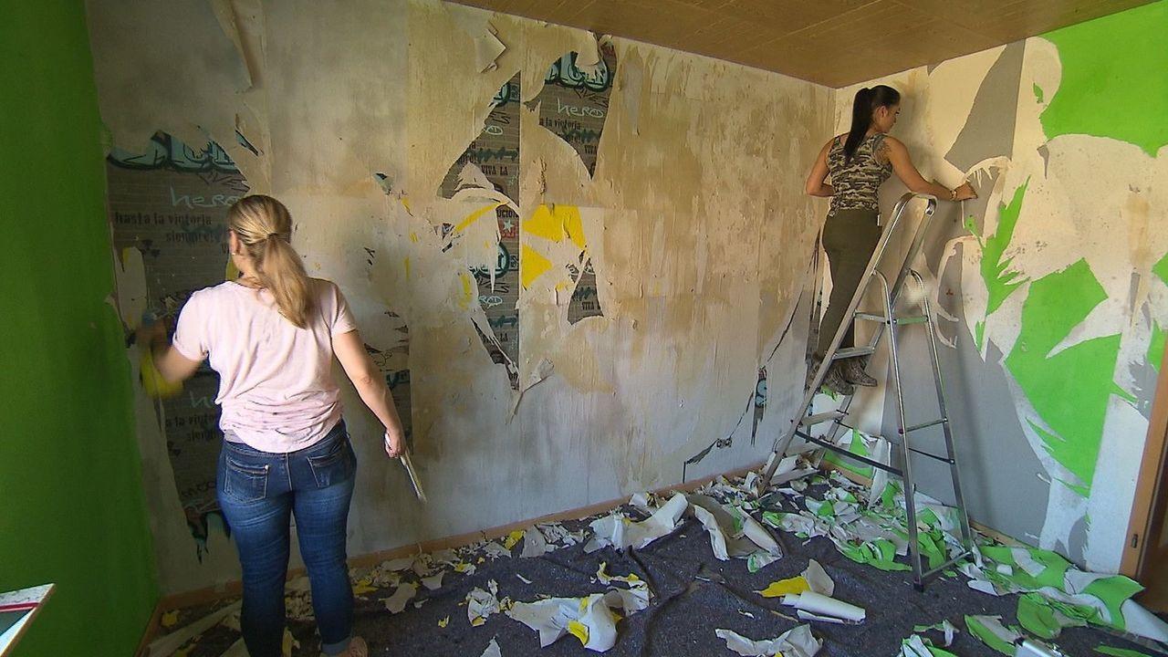 """Fünf Hobby-Heimwerker, fünf Wohnräume, 500 Euro Budget: Die """"Zimmerhelden"""" gestalten sich gegenseitig einen Wohnraum neu. Der Gastgeber gibt ein The... - Bildquelle: SAT.1"""