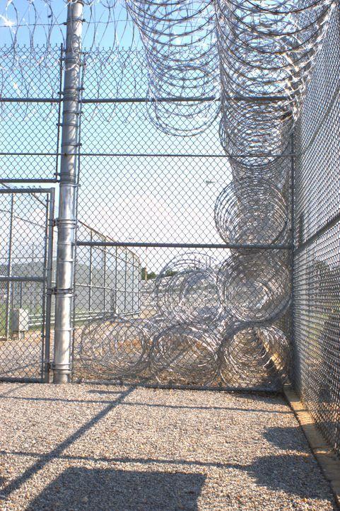 Diesen Zaun wird so schnell keiner überwinden! Doch innerhalb dieses Stacheldrahts beginnt für viele Insassen ein ständiger Kampf auf Leben und Tod... - Bildquelle: Derek Bell part2 pictures