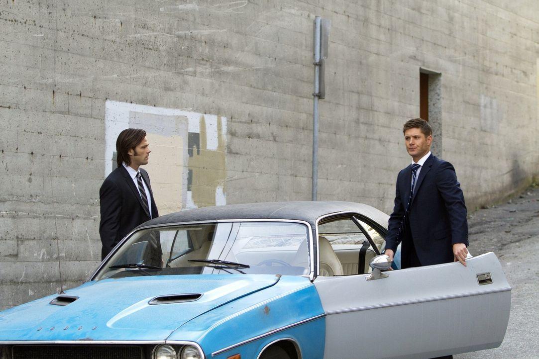 Der Kampf gegen das Böse geht weiter: Sam (Jared Padalecki, l.) und Dean (Jensen Ackles, r.) ... - Bildquelle: Warner Bros. Television