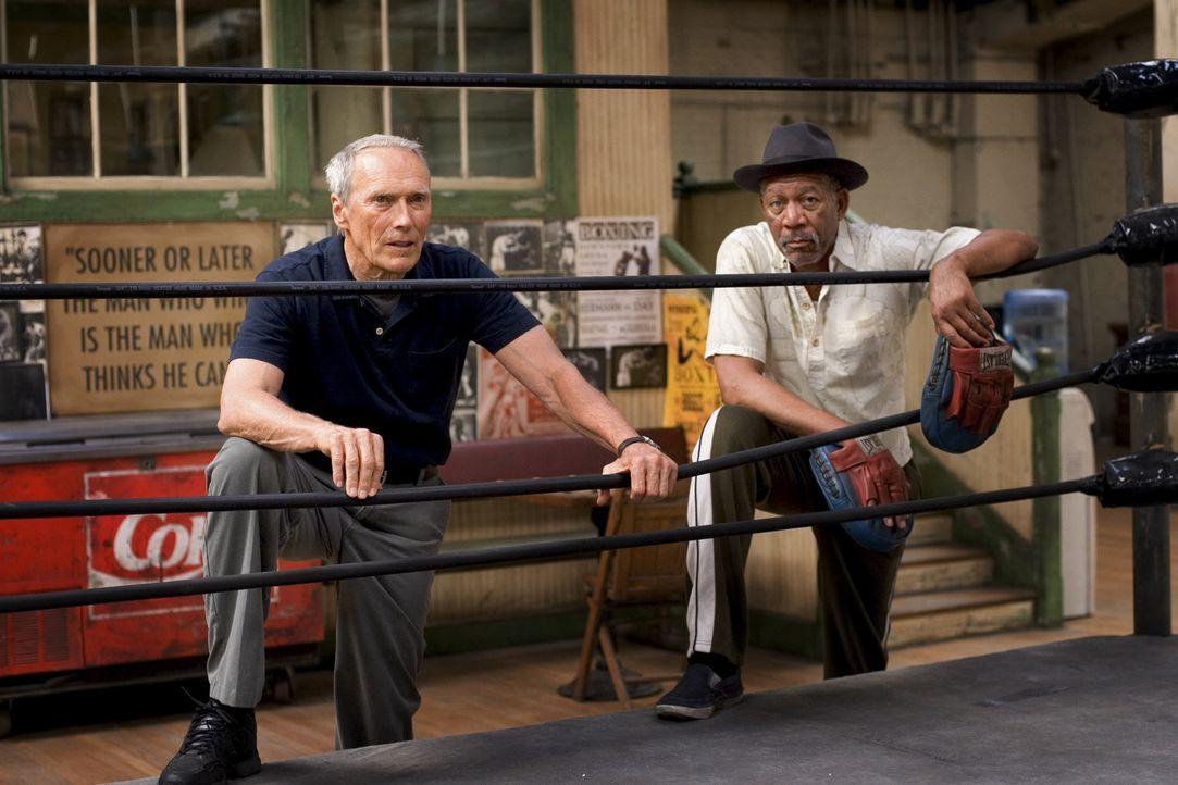 Zunächst erkennt nur Scrap (Morgan Freeman, r.), Hausmeister, Ex-Boxer und Frankies einziger Freund, Maggies Durchsetzungswillen. Heimlich unterst - Bildquelle: Epsilon Motion Pictures
