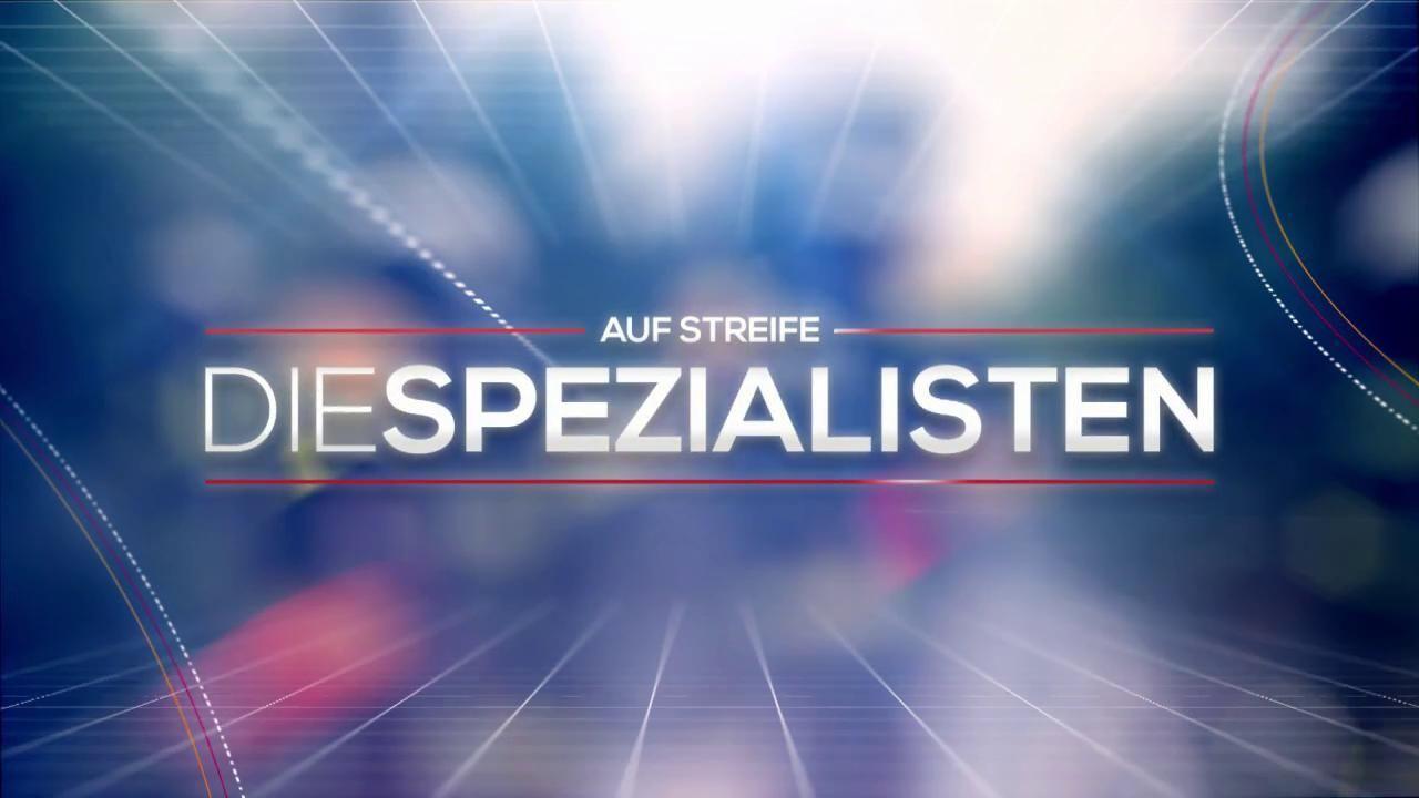 Logo Auf Streife Die Spezialisten 2