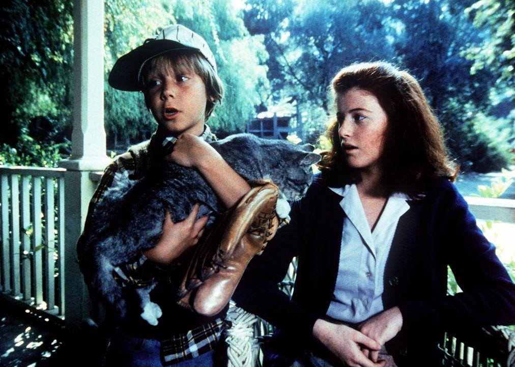Jeffrey (Keith Mitchell, l.) bringt eine trächtige Katze mit nach Hause und möchte sie gerne behalten. Elizabeth (Kami Cotler, r.) glaubt nicht, das... - Bildquelle: WARNER BROS. INTERNATIONAL TELEVISION