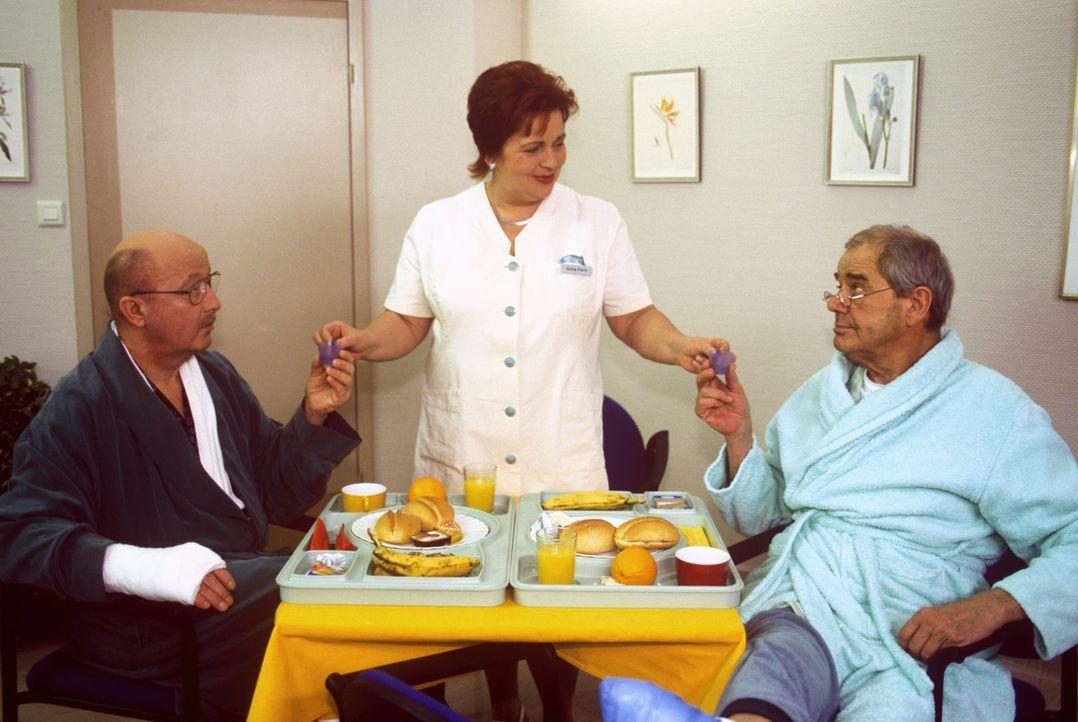 Klara (Walfriede Schmitt, M.) freut sich, dass die so unterschiedlichen Zimmergenossen, der ehemalige Vorstandsvorsitzende Bethmann (Wolf-Dietrich B... - Bildquelle: Noreen Flynn Sat.1