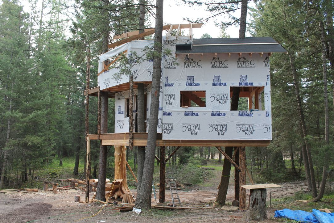 Besser als mitten im Wald zu leben, ist nur noch auf einem Baumhaus im Wald zu leben, finden auch die Treehouse Guys und bauen mit bestem Wissen und... - Bildquelle: 2016,DIY Network/Scripps Networks, LLC. All Rights Reserved