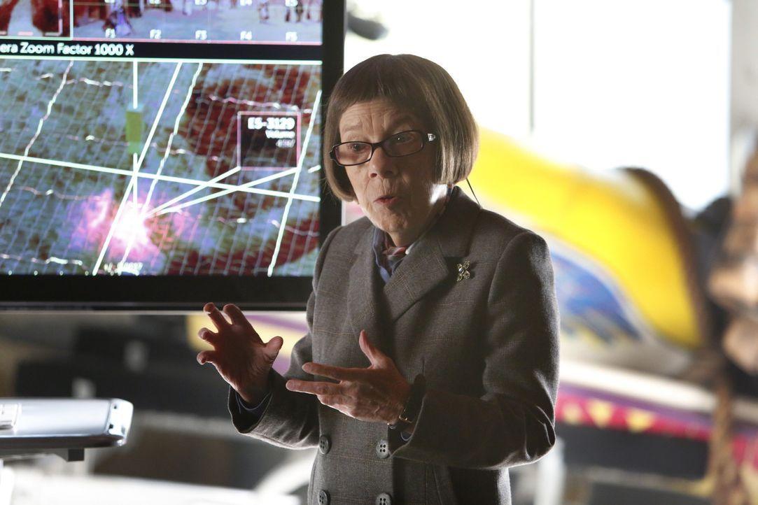 Kann Hetty Lange (Linda Hunt) dem Team helfen einen Kunstbetrug aufzuklären? - Bildquelle: Cliff Lipson 2014 CBS Broadcasting, Inc. All Rights Reserved