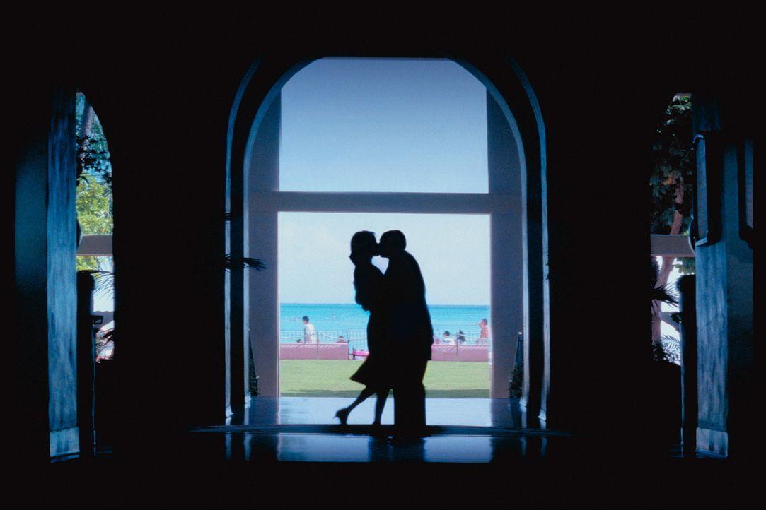 Barry Egan (Adam Sandler, r.), ein kleiner Geschäftsmann mit einer schweren Kindheit, sieben Schwestern und Angst vor der Liebe, trifft Lena (Emily... - Bildquelle: Senator Film