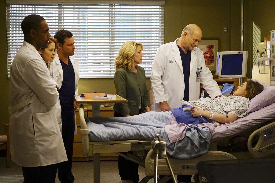 Der Kampf um das Sorgerecht für Sofia geht weiter, während sich Alex (Justin Chambers, 3.v.l.), April (Sarah Drew, 2.v.l.), Ben (Jason George, l.) u... - Bildquelle: Richard Cartwright ABC Studios