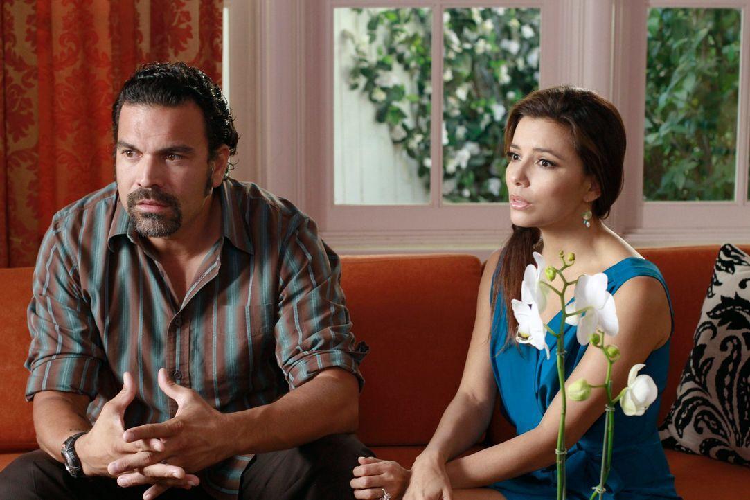 Während Lynette aus Eifersucht, Lügen über Toms neue Freundin erzählt, versuchen Carlos (Ricardo Antonio Chavira, l.) und Gabrielle (Eva Longoria, r... - Bildquelle: ABC Studios