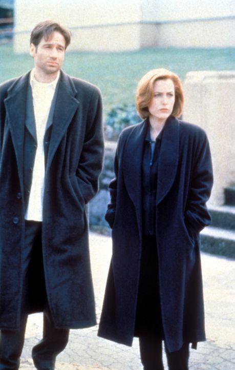(4. Staffel) - Während die FBI-Agentin und Wissenschaftlerin Scully (Gillian Anderson, r.) übernatürlichen Vorgängen mit viel Skepsis begegnet, ist... - Bildquelle: TM +   Twentieth Century Fox Film Corporation. All Rights Reserved.