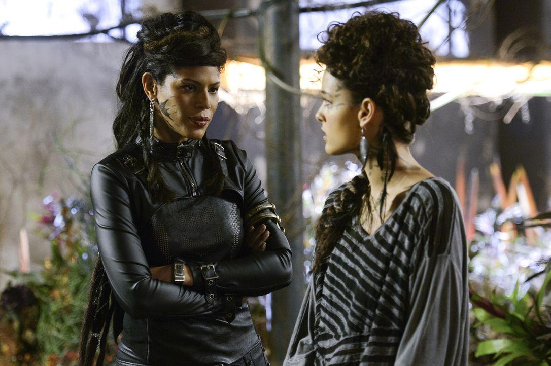 Noch ahnen weder Teri (Chelsea Gilligan, r.), noch Drake oder Roman, welche Ziele Vega (Merle Dandridge, l.) tatsächlich verfolgt ... - Bildquelle: 2014 The CW Network, LLC. All rights reserved.