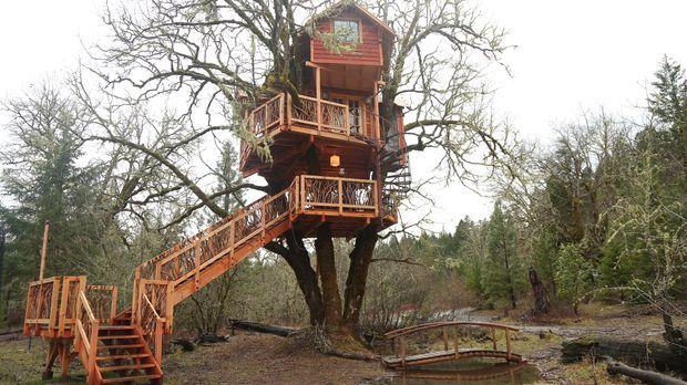 Für die Treehouse Guys ist keine Herausforderung zu groß: Der Besitzer eines...