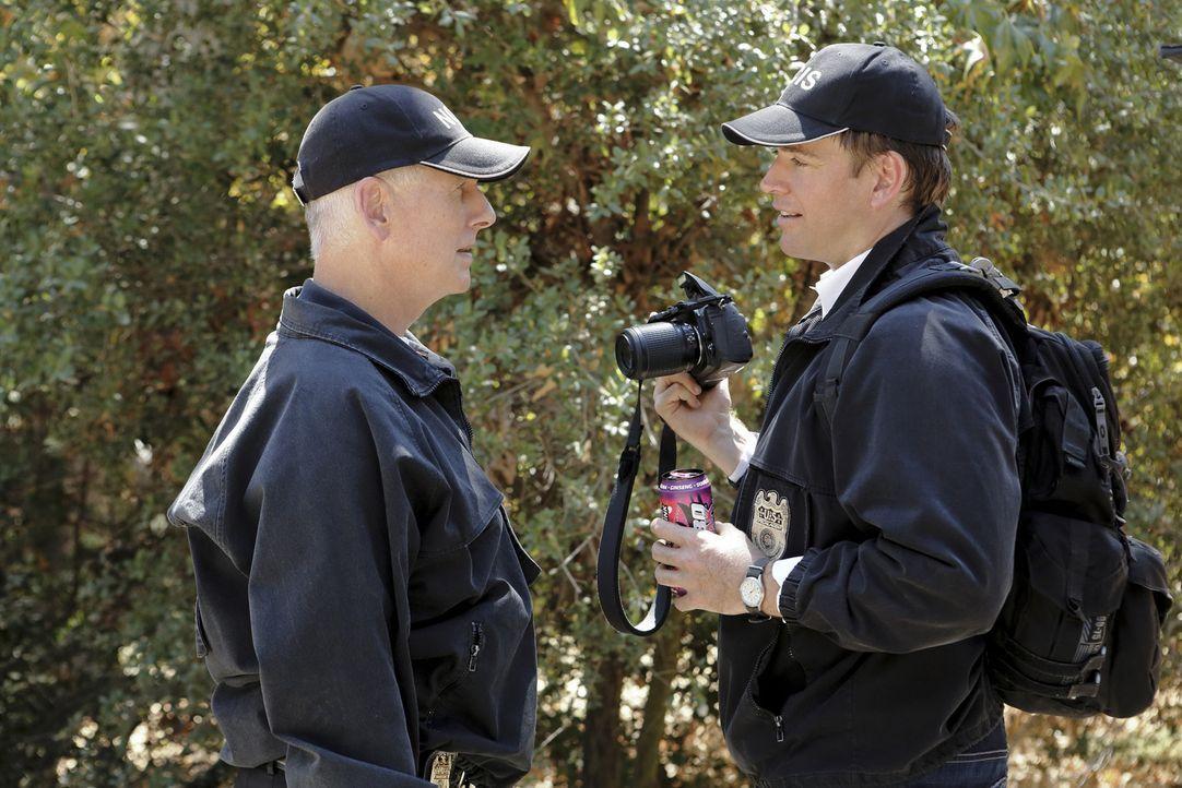 Ermitteln in einem neuen Mordfall: Tony (Michael Weatherly, r.) und Gibbs (Mark Harmon, l.) ... - Bildquelle: CBS Television