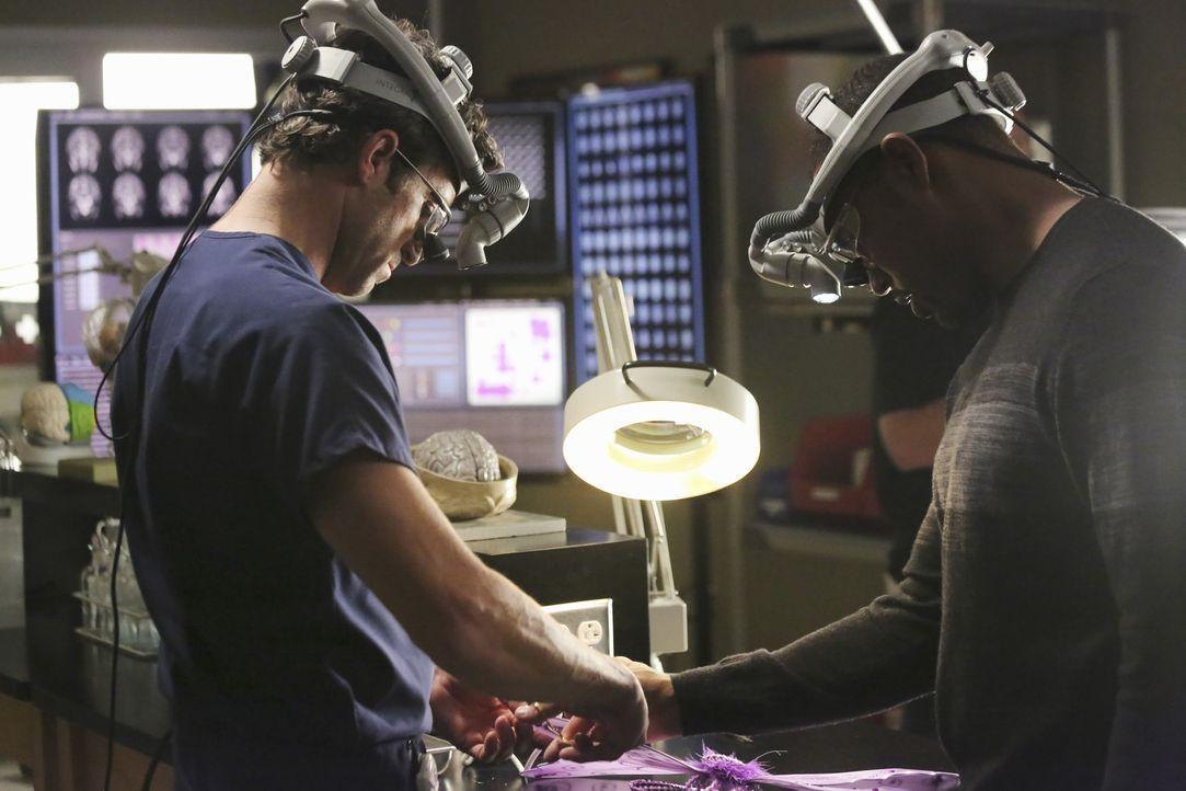 Überraschenderweise taucht Ben (Jason Winston George, r.) aus L. A. auf. Er hat Neuigkeiten zu berichten, währenddessen Derek (Patrick Dempsey, l.... - Bildquelle: ABC Studios