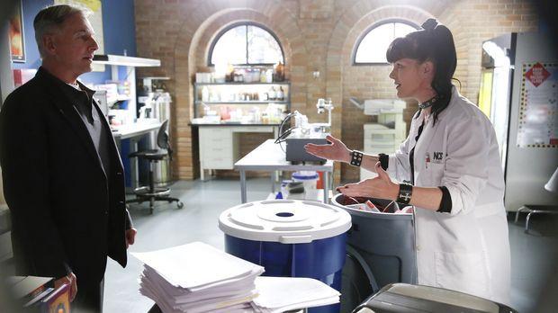 Ein neuer Mordfall beschäftigt Gibbs (Mark Harmon, l.) und Abby (Pauley Perre...